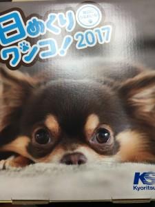 2017年度版 絶賛発売中です☆