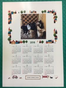 12ヶ月カレンダー☆A4サイズ 愛犬の写真入り♪ 絵柄は2種類!どの絵柄になるかはお任せください!!