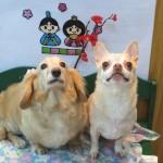 姫ちゃん&ひなちゃん