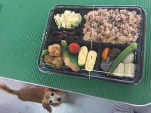 サラちゃんママのお祝い膳♡いつも本当にありがとうございます。