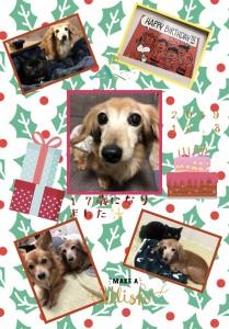 HAPPY☆BIRTHDAY!!